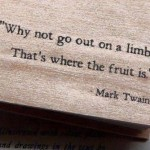 Mark Twain Quote Deb Goldstein Business Career Coach