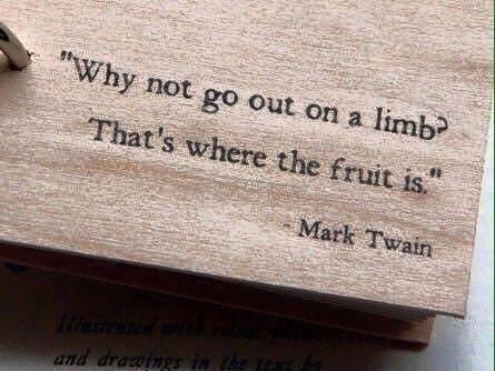 Mark Twain Quote Deb Goldstein Business Career Coach